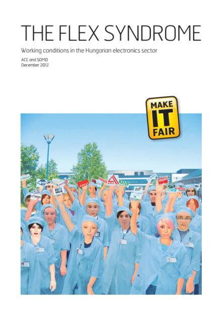 publication cover - The Flex Syndrome
