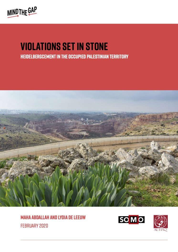 publication cover - Violations Set in Stone